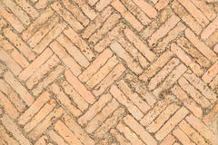 Red brick paving stones on a sidewalk Stock Photography