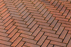 Red brick road pavement, background texture Royalty Free Stock Image