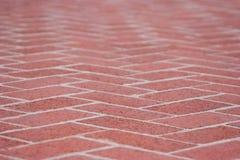 Red brick sidewalk Royalty Free Stock Images