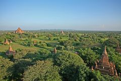 The red brick stupas and pagodas of the Bagan plains stretch out to the horizon. Looking across the Bagan Archaeological Zone spread over 26 square miles of lush Royalty Free Stock Image