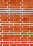 Red brick texture. Royalty Free Stock Image