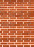 Red brick texture. vector illustration