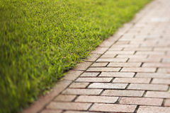 Red Brick Walkway Royalty Free Stock Image