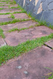 The red brick walkway in garden. And home Royalty Free Stock Photo