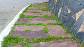 The red brick walkway in garden. And home Royalty Free Stock Image