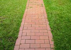 Red brick walkway with green grass Stock Photos