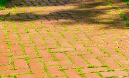 Red brick walkway Stock Image