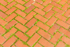 Red brick walkway Royalty Free Stock Images