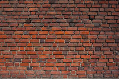 Red brick wall. Royalty Free Stock Image