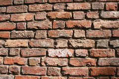 Red brick wall. A wall built of old red bricks Stock Images