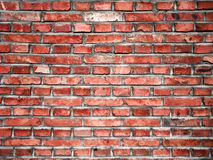 A red brick wall. In countryside Royalty Free Stock Photos