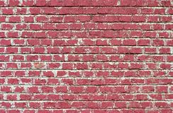 Red Brick Wall. Texture Stock Images