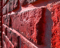 Red Brick Wall. Shallow depth of field of a red brick wall.  Focus on the brick sticking out of the wall.  Brick fades in blurr to the horizon Royalty Free Stock Images