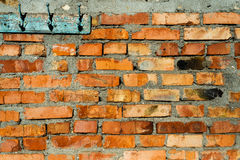 Red brick wall as background Stock Image