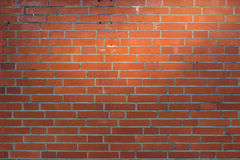 Red brick wall background with natural sun highlight Royalty Free Stock Images