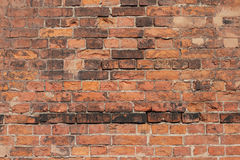 Red Brick Wall Background Royalty Free Stock Photo