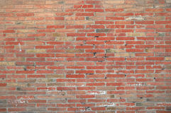 Red brick wall background in a photographer photo studio Stock Photo