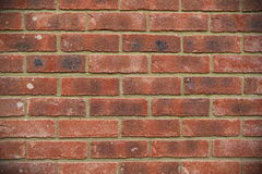 Red Brick Wall. Background Texture Royalty Free Stock Photo