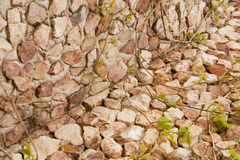 Red brick wall: can be used as background Royalty Free Stock Image