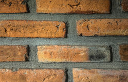 Red brick wall close up Royalty Free Stock Photos