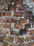 Red brick wall close-up. Stock Photography