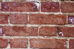 Red brick wall closeup background Stock Photos