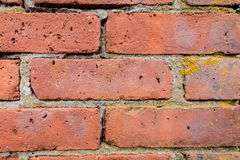Red brick wall closeup. Weathered red bricks are decoratively situated in wall for background texture royalty free stock images