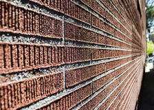 Red brick wall detail. Ed background texture Stock Photography