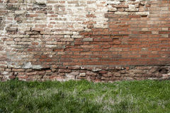 Brick wall and grass Royalty Free Stock Images
