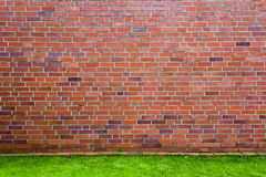 Red brick wall with green grass Stock Photography