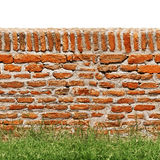 Red brick wall with green grass isolated on white. Red brick wall with green grass on front and isolated on white on the top stock photos