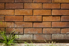 Red brick. Wall with green grass, use for background royalty free stock images