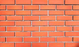 Red brick wall lined up in middle. royalty free stock images