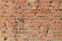 Red brick wall. Stock Image