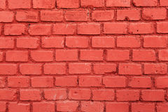The red brick wall Stock Photos