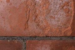 red brick wall Royalty Free Stock Photos