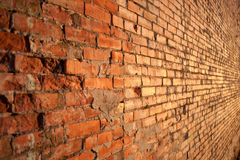 Red brick wall. With sunset light Stock Photo