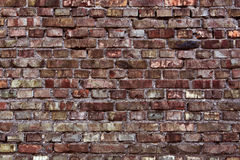 Red brick wall texture Royalty Free Stock Image