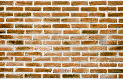 Red brick wall texture background Stock Images