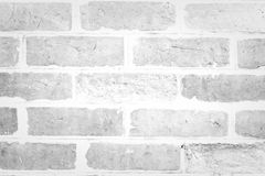 Red Brick wall texture White color Stock Photography