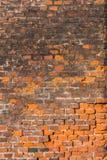 Red brick wall Royalty Free Stock Image