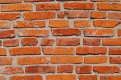 Red brick walld brick wall - natural background Stock Images