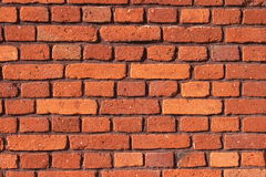 Red bricks background Stock Images