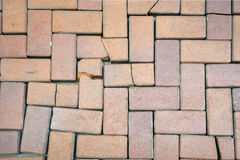 Red bricks floor Stock Photos