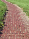 Red Bricks and Green Grass. Brick walkway Royalty Free Stock Images