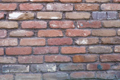 Red bricks. Old tumbled red bricks with mauve mortar Stock Images