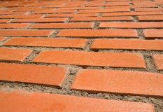 Red bricks and sun. Tilt wall, red bricks and sun royalty free stock photography