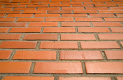 Red bricks and sun. Tilt wall, red bricks and sun royalty free stock image