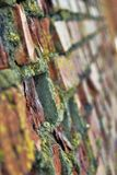 Red bricks wall. Selective focus photo. Red bricks wall. A details of Kolomna Kremlin wall, Moscow Region, Russia.  Selective focus photo Royalty Free Stock Photos
