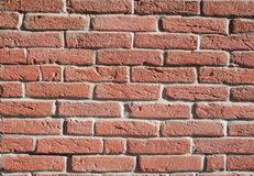 Red bricks wall. In sunny day Stock Image